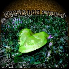 Mushroom Rock (ID 012)